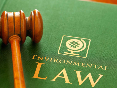 Environmental Law: Human Rights Perspective