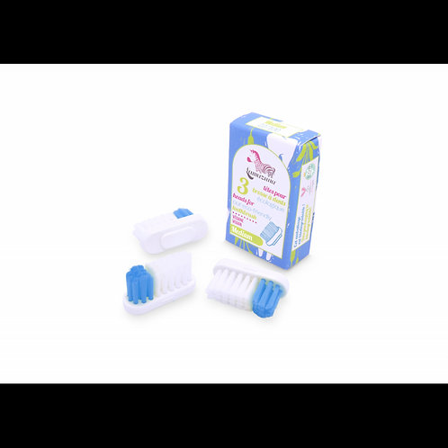 Recharges brosse à dent médium