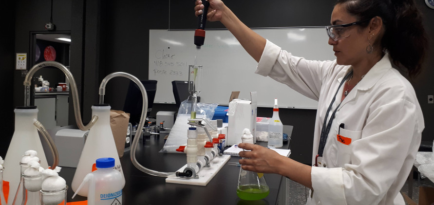 And… extracting the fatty acids from the algae