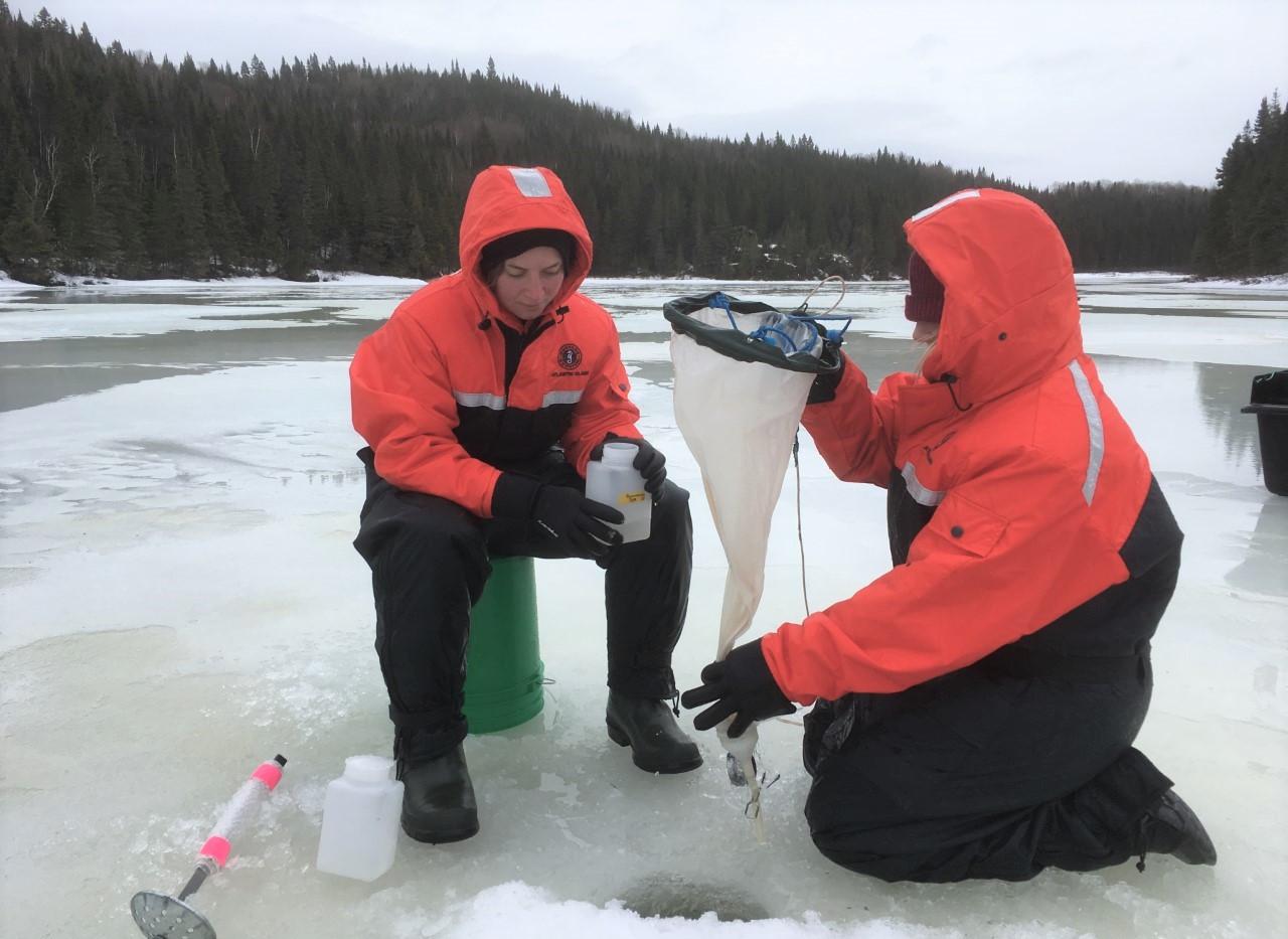 Boreal lake zooplankton sampling