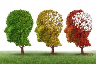 15 puntos claves para cuidar a un enfermo de Alzheimer