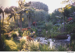 Tropical Garden, Photo Credit.jpg