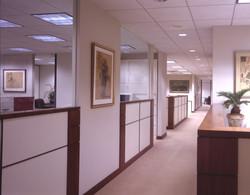 Steinhardt-Open Work Area.jpg