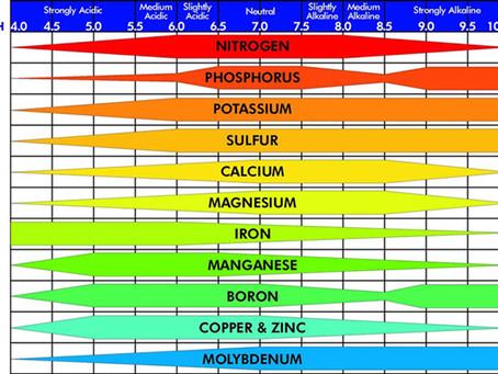 pHhhh - how do I get supersonic growth?