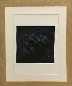 Stephane Dominici Photo 40 x 60 150 €.jp