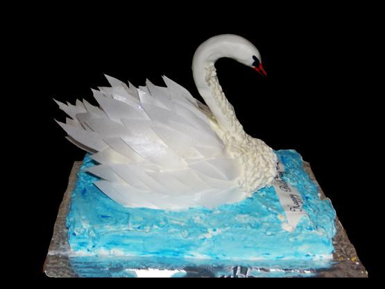 SwanSide.jpg