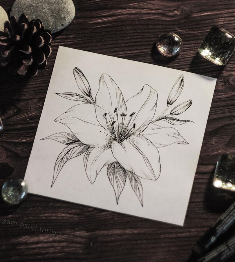 Эскиз тату графика лилия