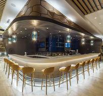 CROWN PLAZA HOTEL FLORYA - ISTANBUL BAR / PENDANT LIGHTING