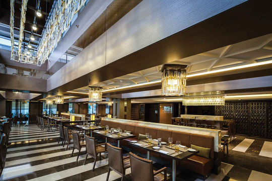 RENAISSANCE POLAT HOTEL BALMUMCU- ISTANBUL RESTAURANT / PLOFONIERA