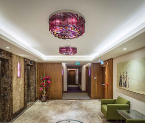 MERCURE HOTEL TOPKAPI - ISTANBUL ELEVATOR HALL / PLAFONIERA