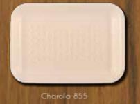 Charola 855 biodegradable