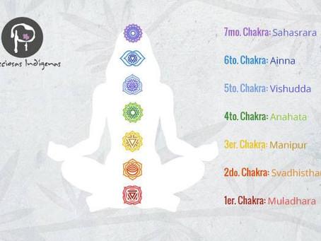 Los chakras y las piedras semipreciosas