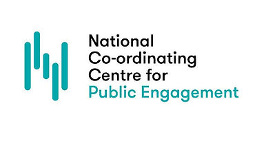 national coordinating centre on public e