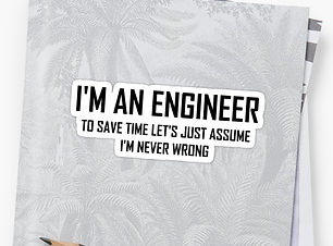i'm an engineer.jpg
