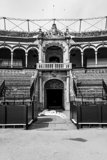 018_Maestranza Puerta del Príncipe exter