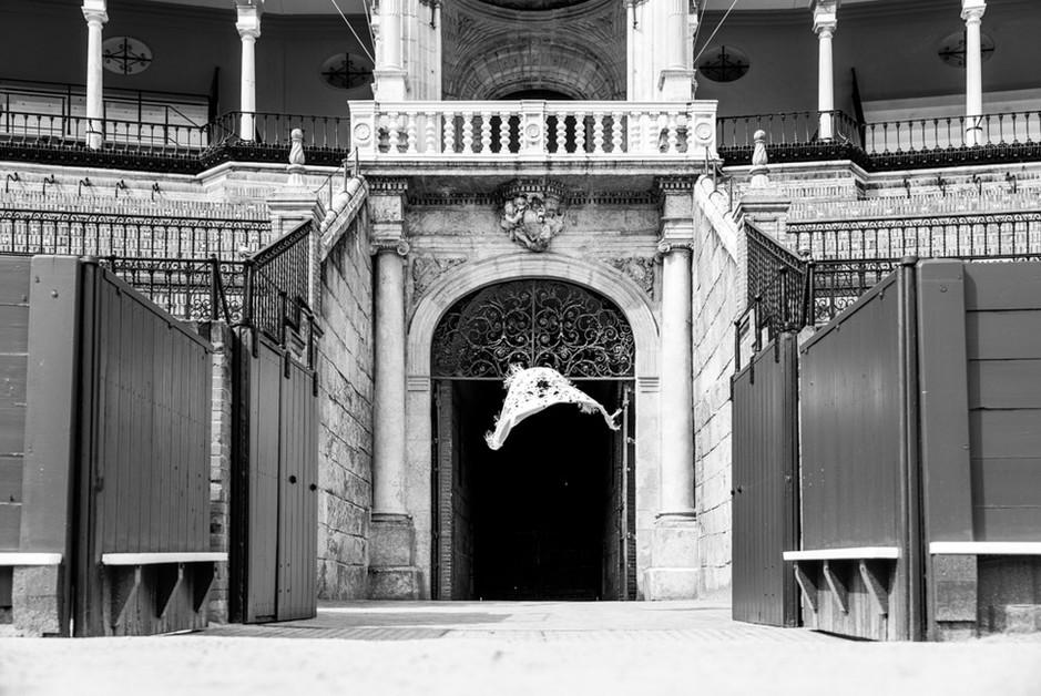 019_Maestranza puerta toros salida.jpg