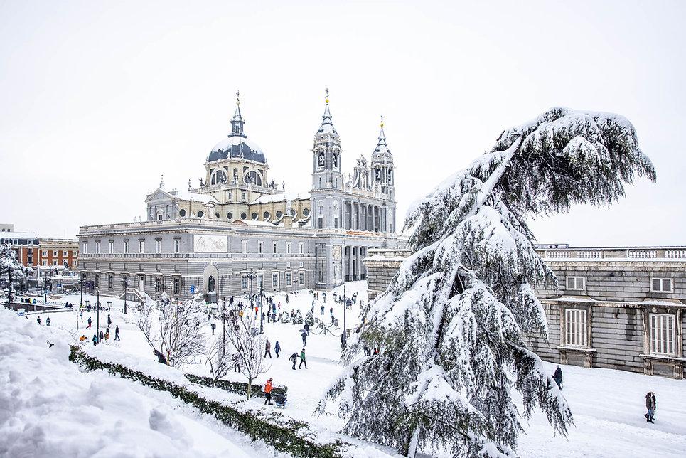 Catedral de la Almudena y Palacio Real, Pino torcido con nieve, Filomena en Madrid, España