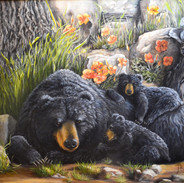 MOMMA AND BABY BLACK BEARS