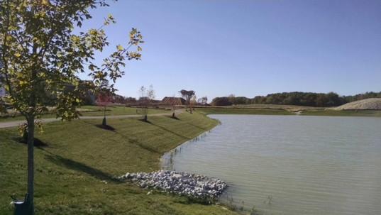 pond at Randolph Street Park