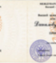 Андрей Данилов. Аттестат профессора.jpg