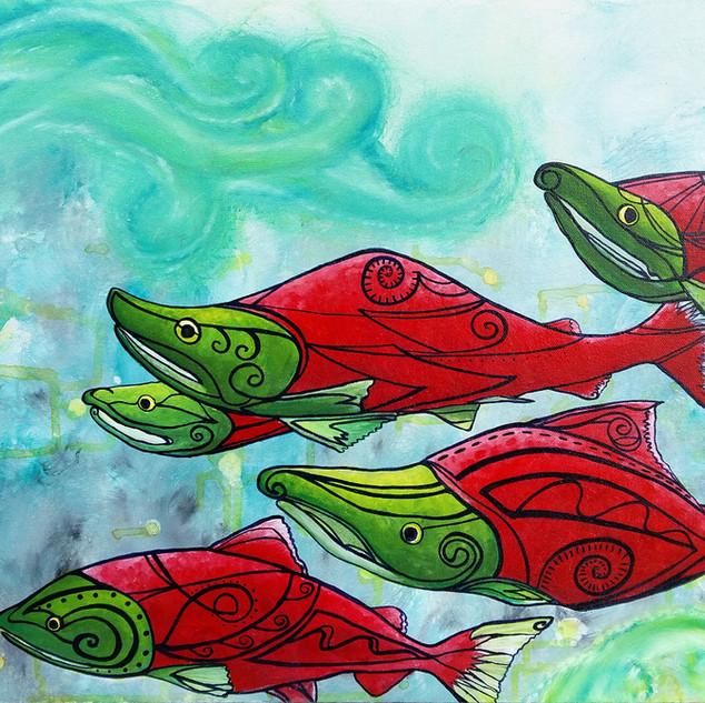 Sassy Salmon