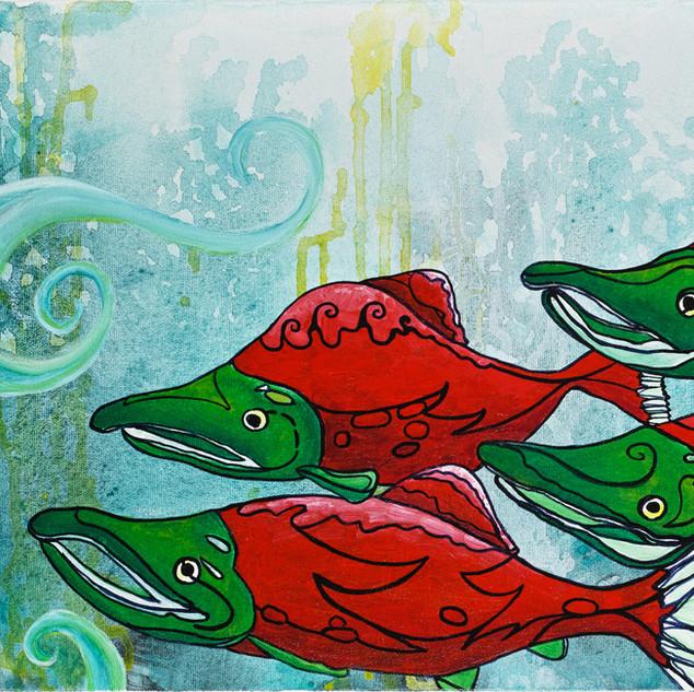 Seven Spunky Salmon