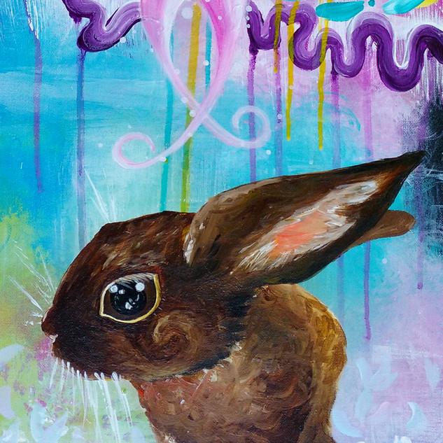 Zoe the Bunny