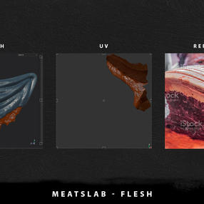 Meatslab_Flesh.jpg