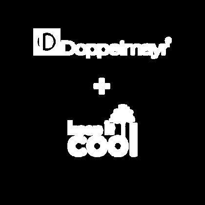 DOPPEL+KIC.png
