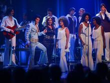 Elvis Experience live