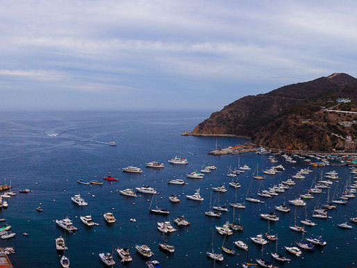 LA County issues ocean water warning for Avalon Beach at Catalina Island.