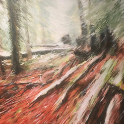 Forest Floor SOLD