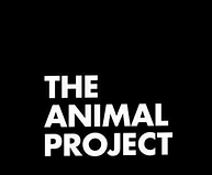 The Animal Project.png