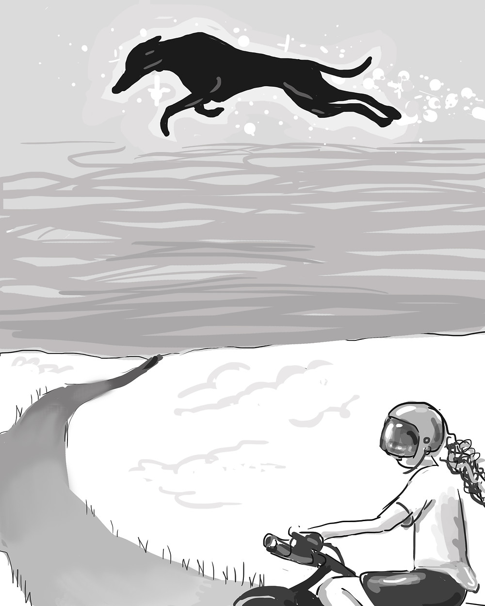 Chapter illustration from Gage the Flying Whippet, book one.