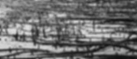 DSC08315 (2).jpg