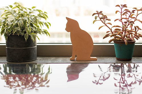 חתול בטון