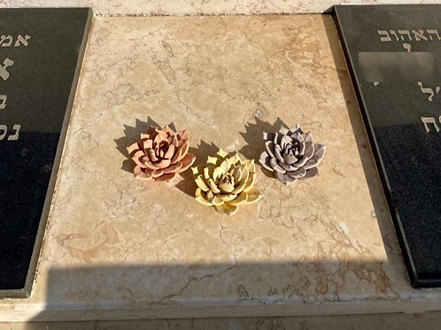 שלישיית פרחי לוטוס גדולים