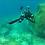 Thumbnail: Salvimar Traje de Neopreno Seawalker 3.5mm
