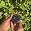 Thumbnail: Black glittered spice grinder