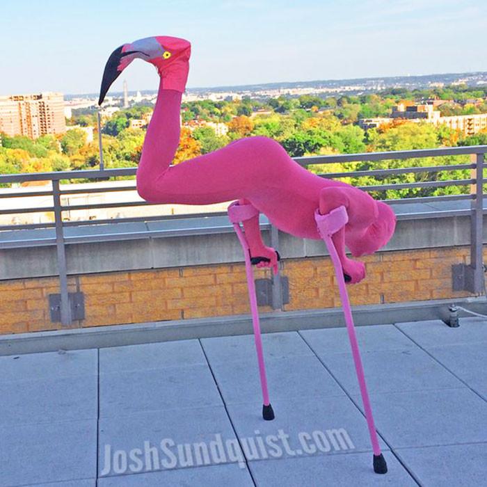 Flamingo Amputee Costume