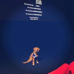 La star au cinéma.