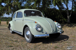 1200-1963_001