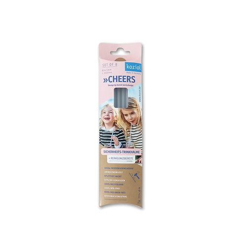 Daugkartinio naudojimo šiaudeliai CHEERS ( 8 vnt. + valymo šepetėlis)