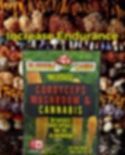 Cordyceps Increase Endurance Mushrooms and Cannabis Blossom Canna