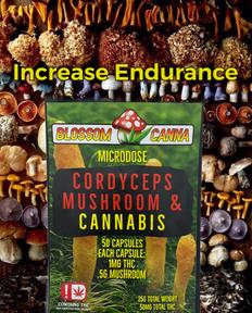 Cordyceps Increase Endurance.png