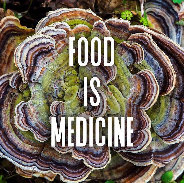 Turkey Tail Mushroom Food Is Medicine
