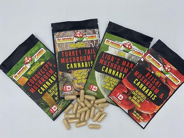 Blossom Canna Mushrooms and Cannabis