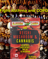 Reishi Fight Asthma.png