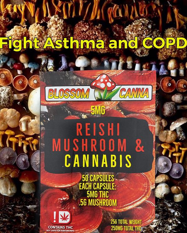 Reishi Fight Asthma Blossom Canna Mushrooms Cannabis
