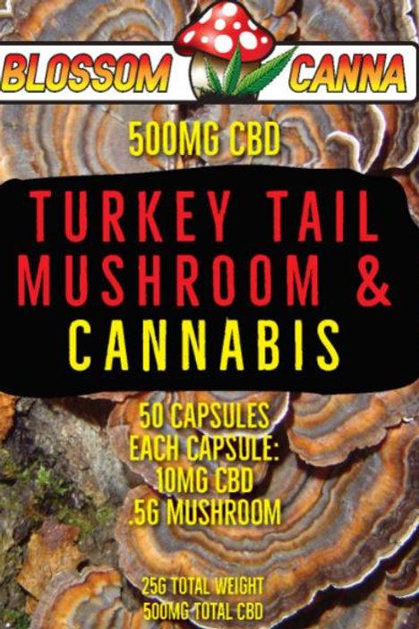 Turkey Tail Blossom Canna CBD Capsule